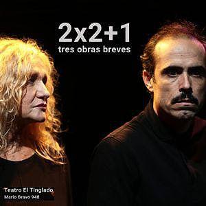 2x2+1